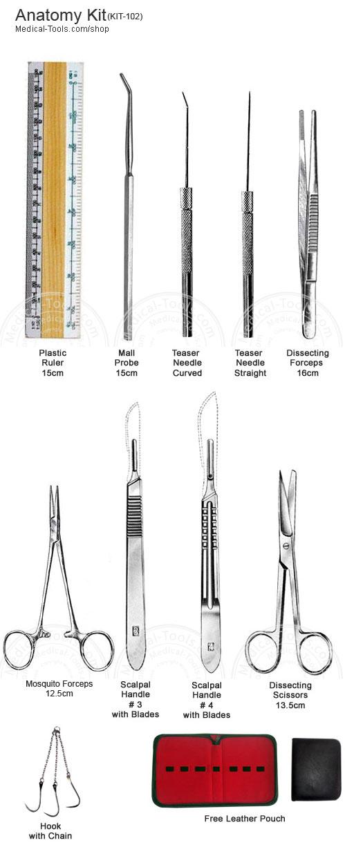 Anatomy Kit Student Kits Medical Tools Shop