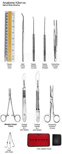 Dentist botany