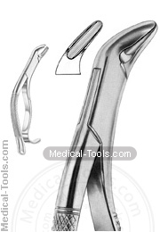 American Extracting Forceps No. 288