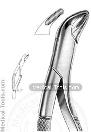 American Extracting Forceps No. 14