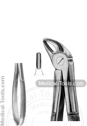 English Extracting Forceps No. 38