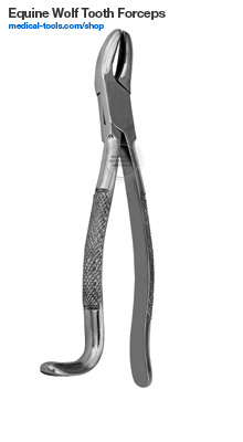 Equine Wolf Tooth Forceps